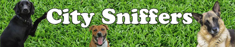 City Sniffers, site logo.