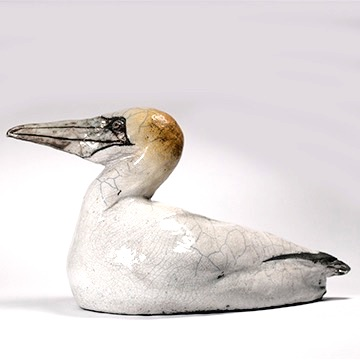 Anita Peach Gannet for blog