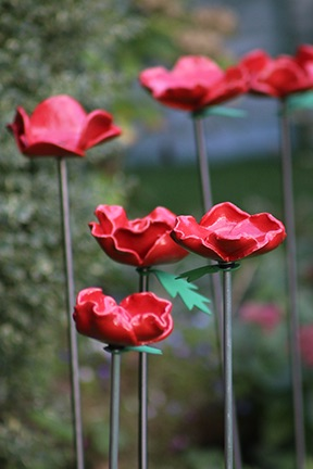 Poppies for e-mail