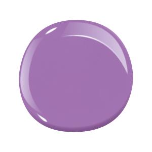 48 Purple Groove
