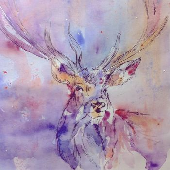 Stag Watercolour, Unique Irish Gifts