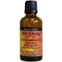LARGE 50ml BOTTLE ~ May Chang ~ Pure Essential Oil