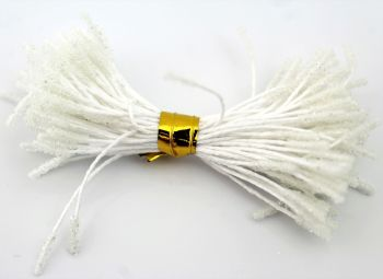 Stamens - White double ended Stamens (N1)