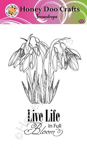 Snowdrops   (A6 Stamp)