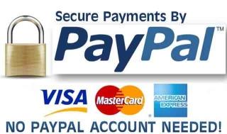 paypal_logo 1