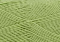 Dill (1509) Comfort 4ply Wool
