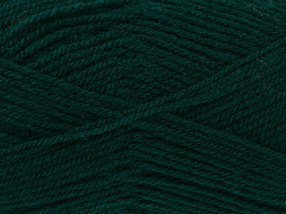 Bottle (1694) Pricewise DK Wool
