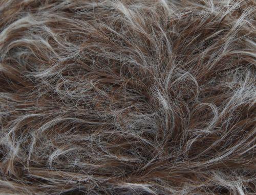Beaver (4208) Luxury Fur