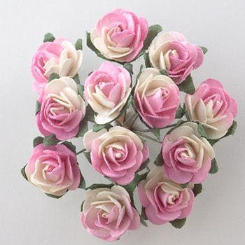Miniature Tea Roses
