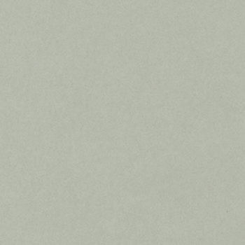 12 x 12 Colourset Card - Ash
