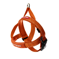 Quick Fit Harness Mediun  ON SALE.