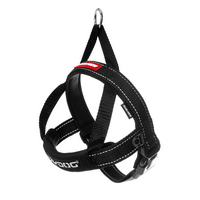 Quick Fit Harness Large ON SALE.