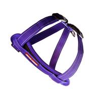 tn_chest plate purple