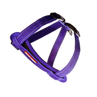 Chest Plate Dog Harness-Purple-Medium ON SALE.