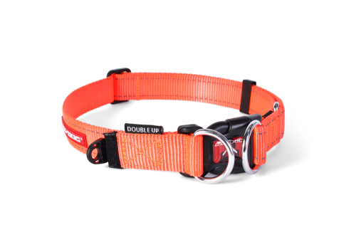 Double Up Dog Collar - Orange - Xtra Large