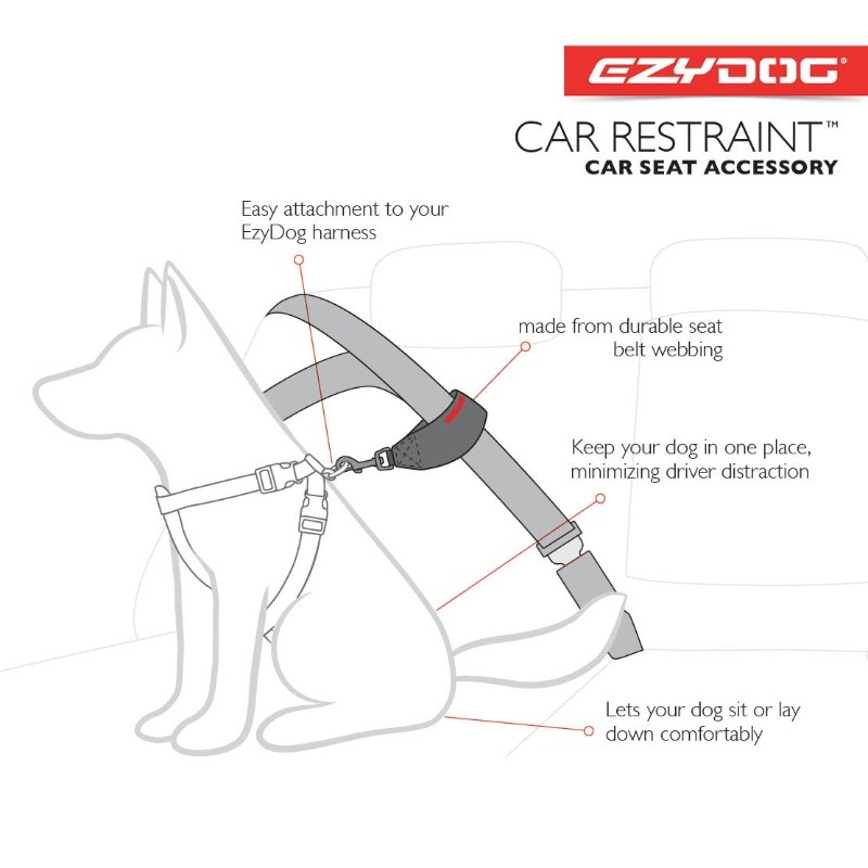 carseatrestraint-sq-diagram