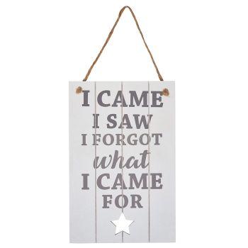 ' I came I saw, I forgot ...' slatted sign with star detail