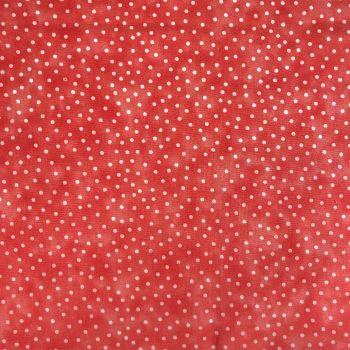 Blender Spot | Coral