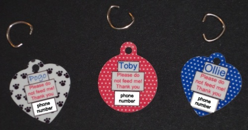 Pet Collar Tags