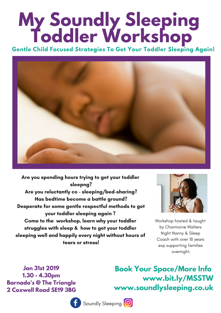 My Soundly Sleeping Toddler Workshop