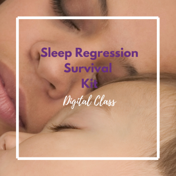 Sleep Regression Survival Kit Digital Class