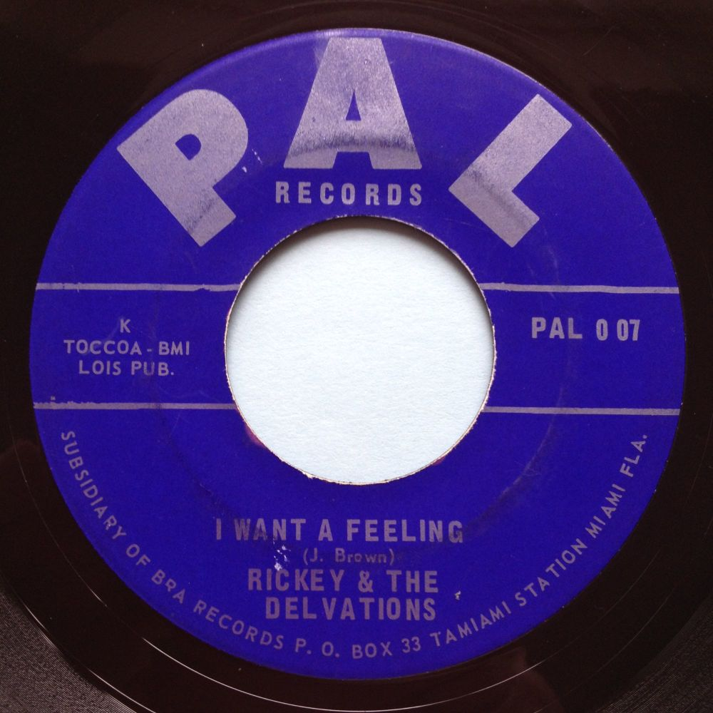Ricky & The Delvations - I want a feeling b/w Hippie - PAL - Ex-