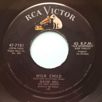 David Hill - Wild Child - RCA - Ex (slight dish nap)