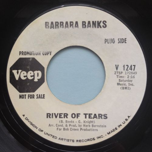 Barbara Banks - River of tears - Veep promo - VG+ (some label wear)
