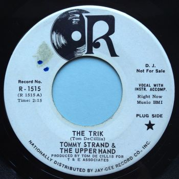 Tommy Strand & the Upper Hand - The Trik - R promo - Ex