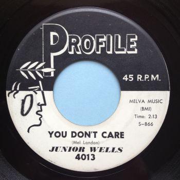 Junior Wells - You don't care - Profile promo - Ex