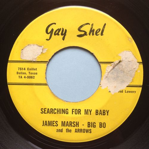 James Marsh with Big Bo and the Arrows - Searching for my baby - Gayshell -
