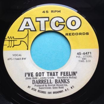 Darrell Banks - I've got that feeling - Atco - Ex-