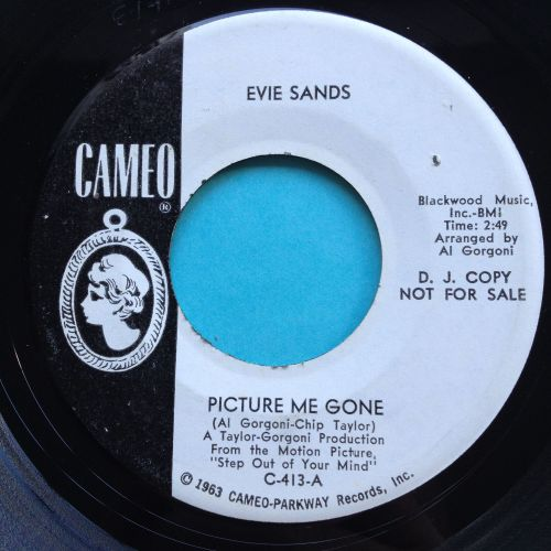 Evie Sands - Picture me gone - Cameo promo - Ex
