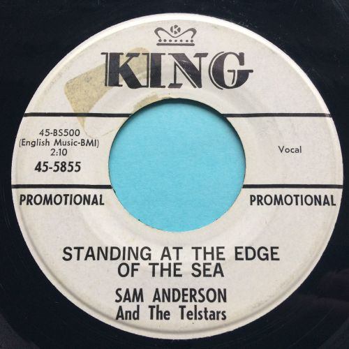 Sam Anderson - Standing at the edge of the sea - King promo - VG+