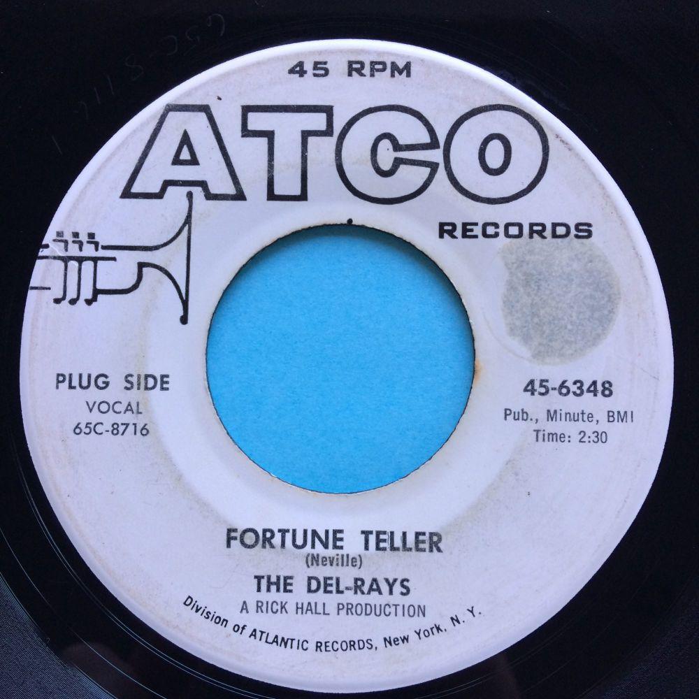 Del-Rays - Fortune Teller - Atco  promo - VG+