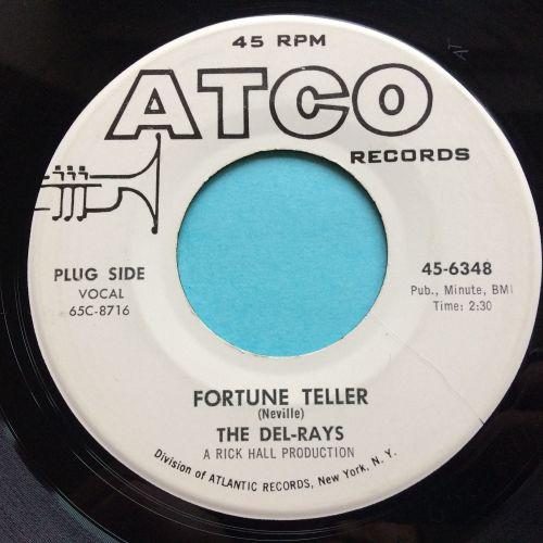 Del-Rays - Fortune Teller - Atco promo - Ex