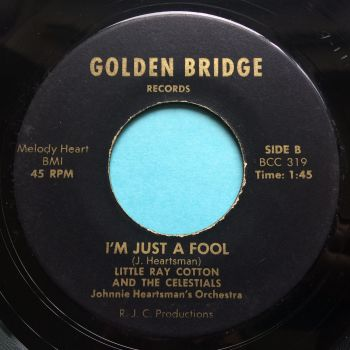 Little Ray Cotton and the Celestrials - I'm just a fool - Golden Bridge - Ex