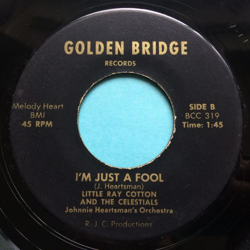 Little Ray Cotton and the Celestrials - I'm just a fool - Golden Bridge - E