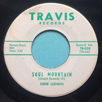 Gene Ludwig - Soul Mountain - Travis - Ex-