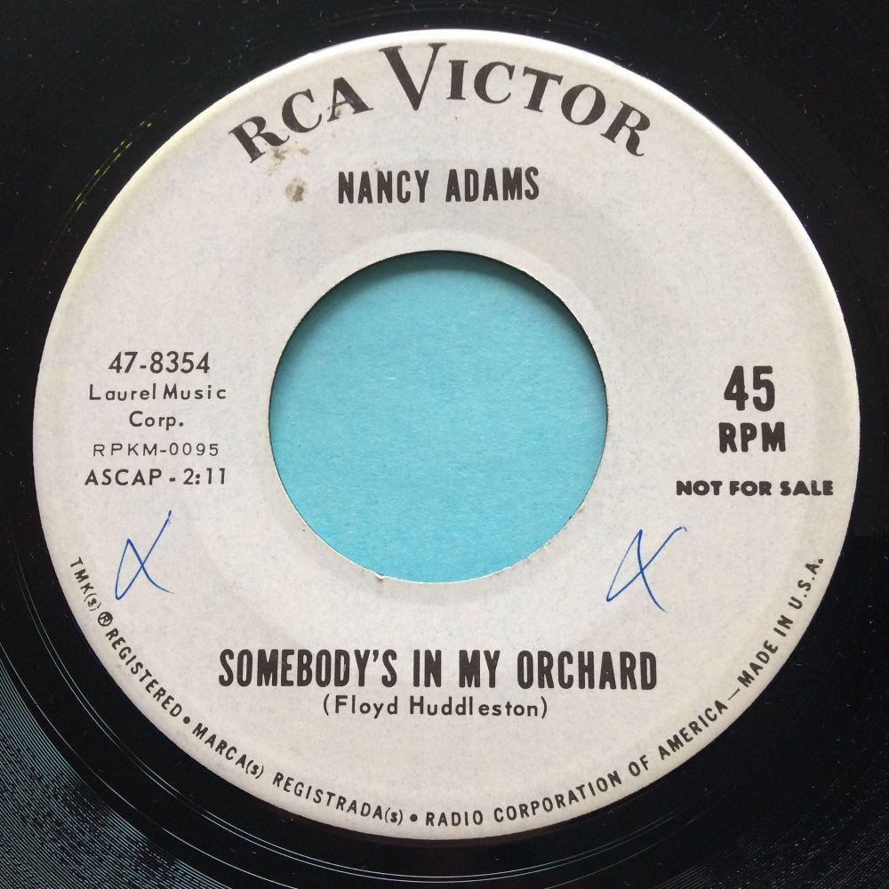 Nancy Adams - Somebody's in my orchard - RCA promo - Ex-