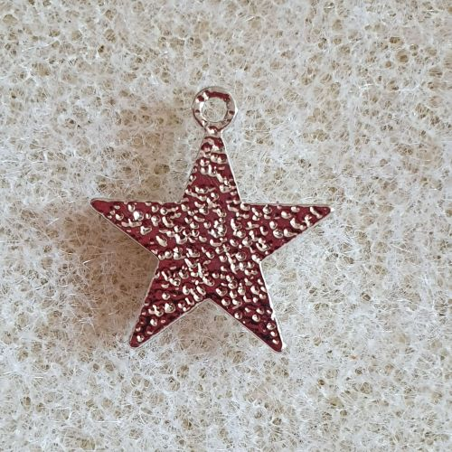 Platinum Plated Star Charm