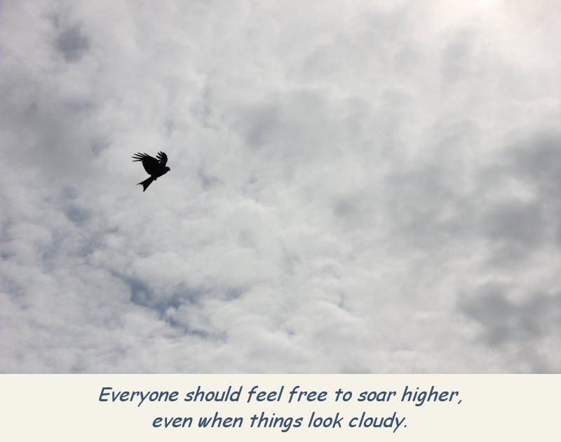 photo-eagle