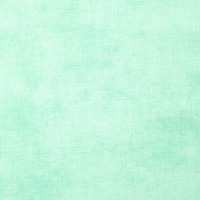 Basic Shade Wintergreen Pale Green Riley Blake Designs