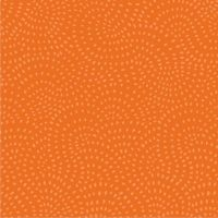 Twist ~ Dashwood Studio ~ Pumpkin