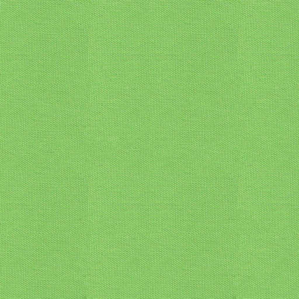Pop ~ Cotton Plains Collection ~ Dashwood Studio ~ Spring