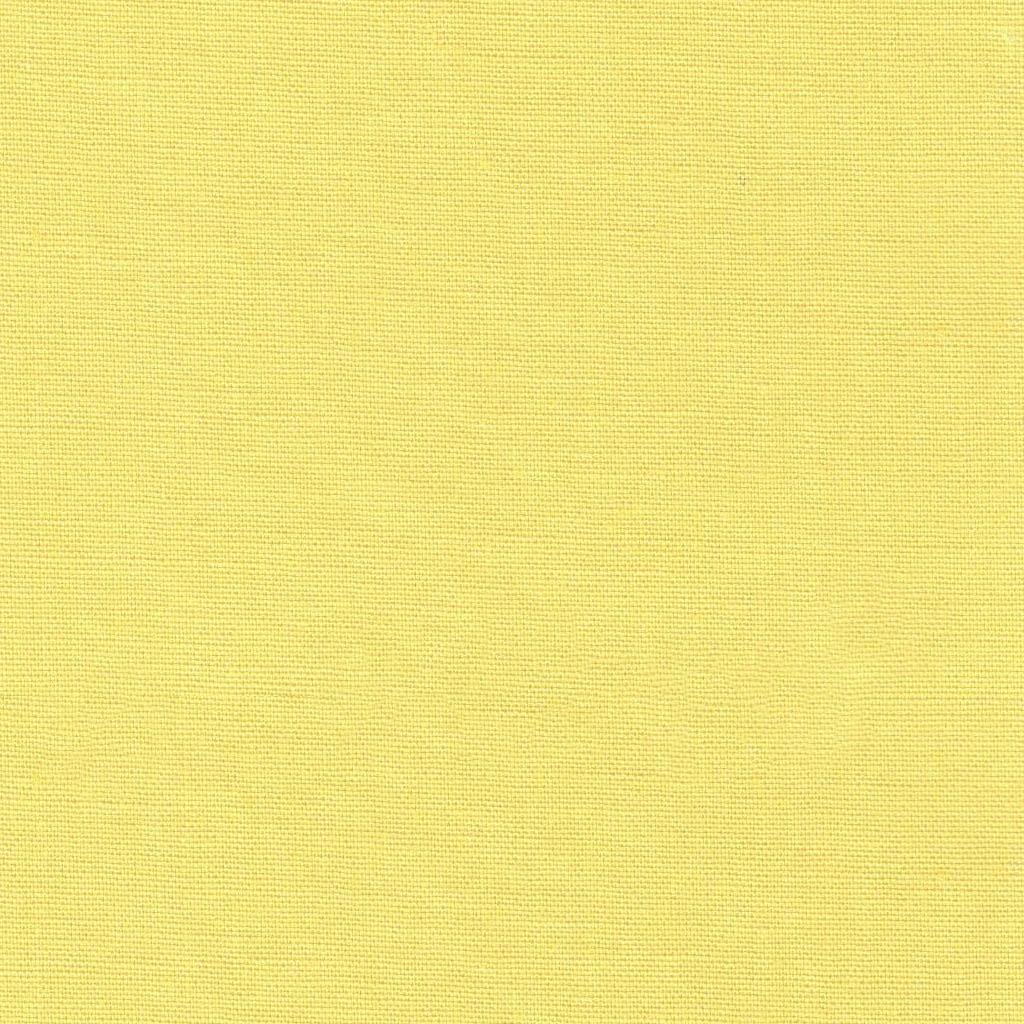 Pop ~ Cotton Plains Collection ~ Dashwood Studio ~ Daffodil