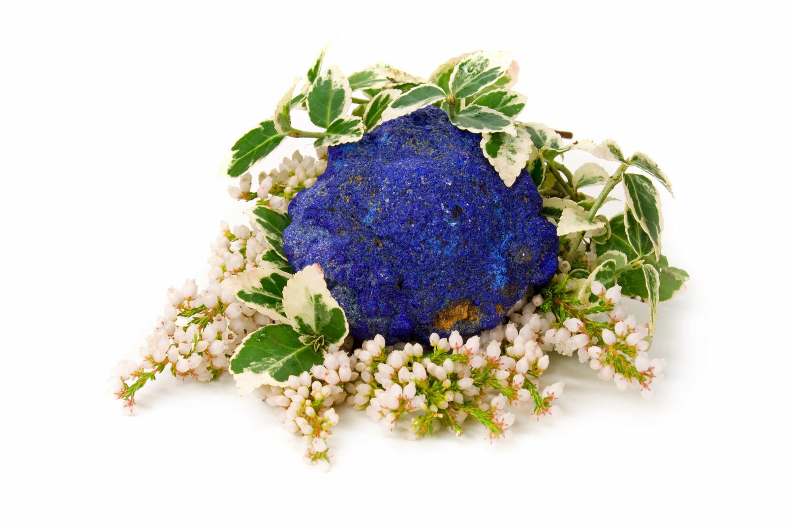citrine point on purple flowers