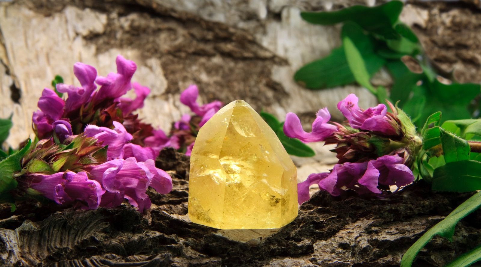 citrine point on purple flowers