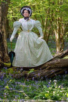Romantic era day dress