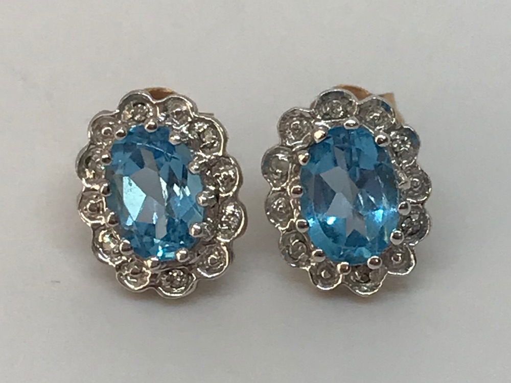 Earrings (Pre-loved)